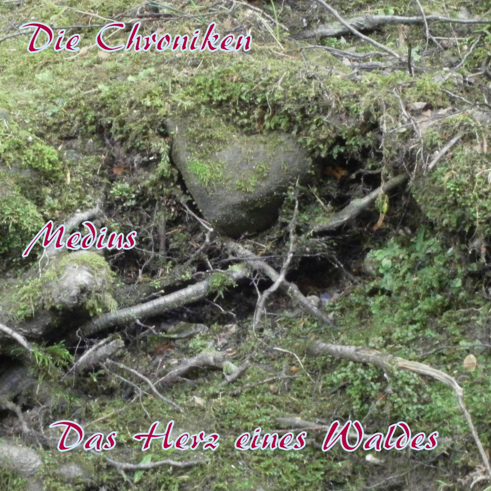 Mitte - Das Herz eines Waldes