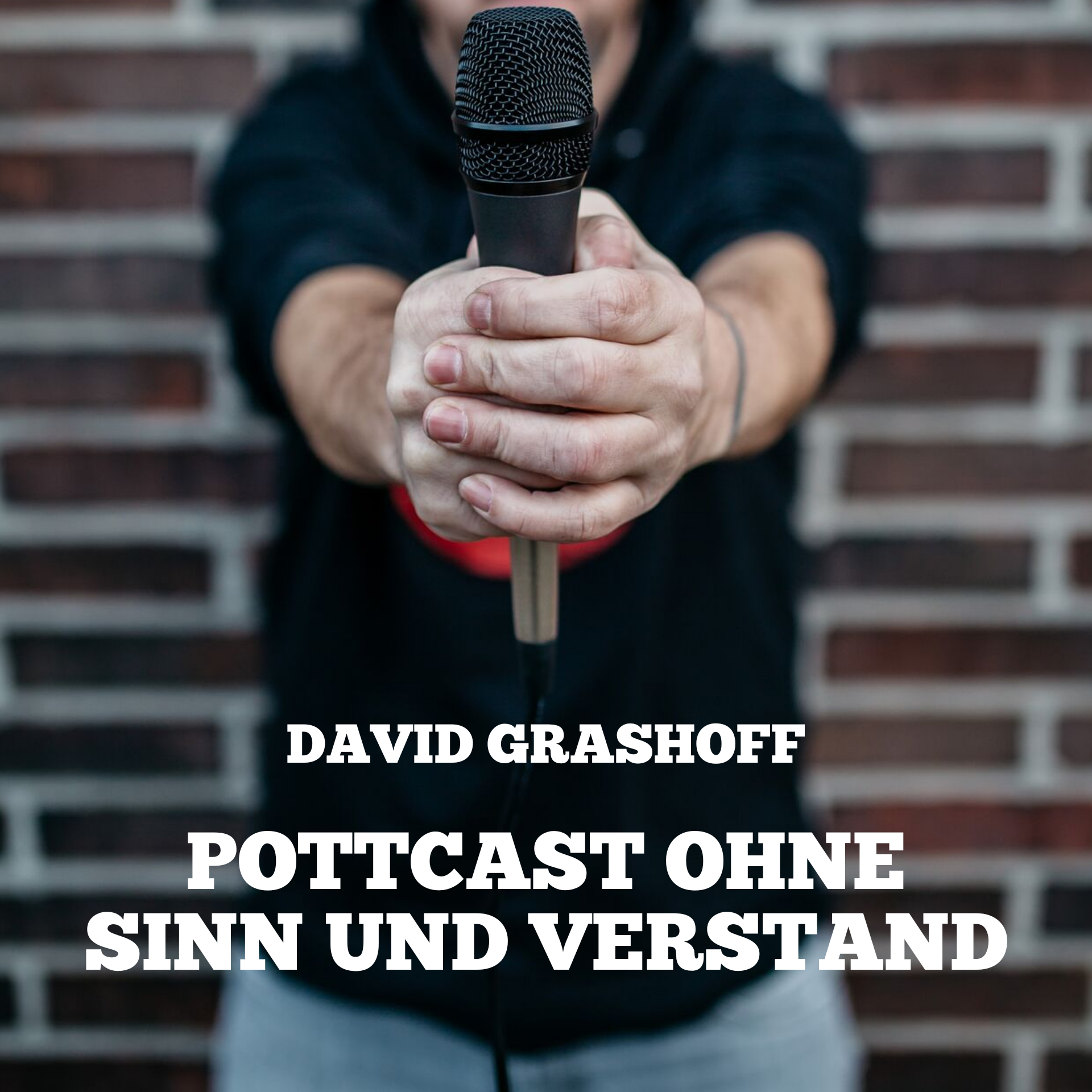 POSUV#13 - Schicki-Micki-Nazi-Porn - Pottcast ohne Sinn und ...