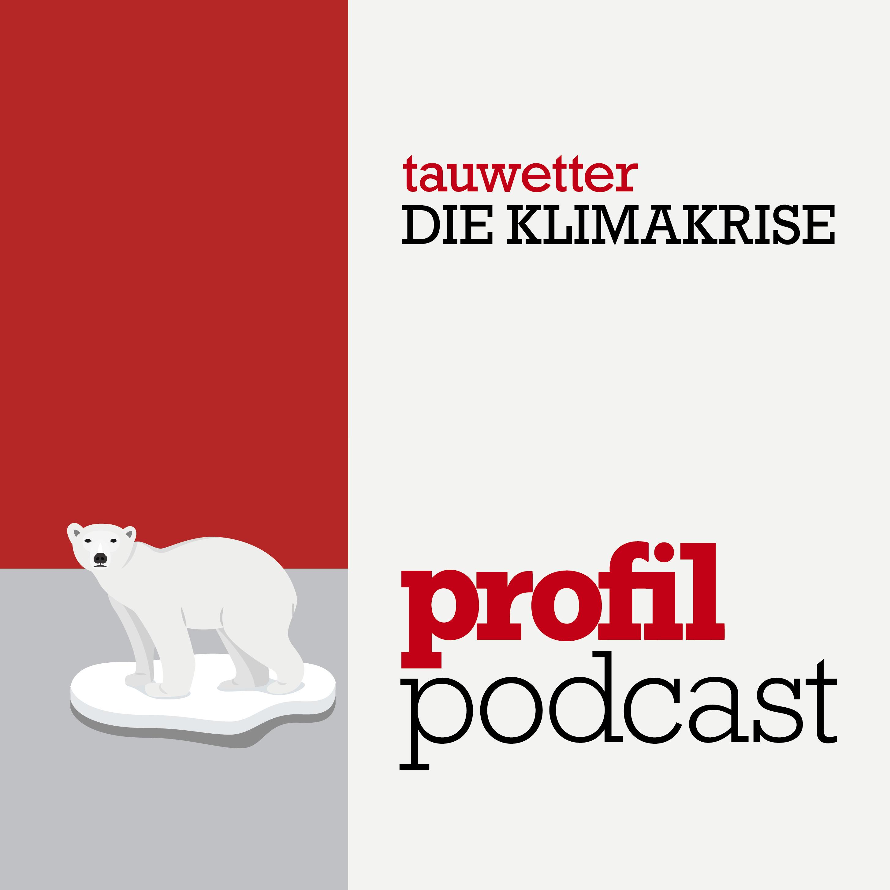Tauwetter #17: Warum die Wiener Stadtstraße von Klimaschützern besetzt wird