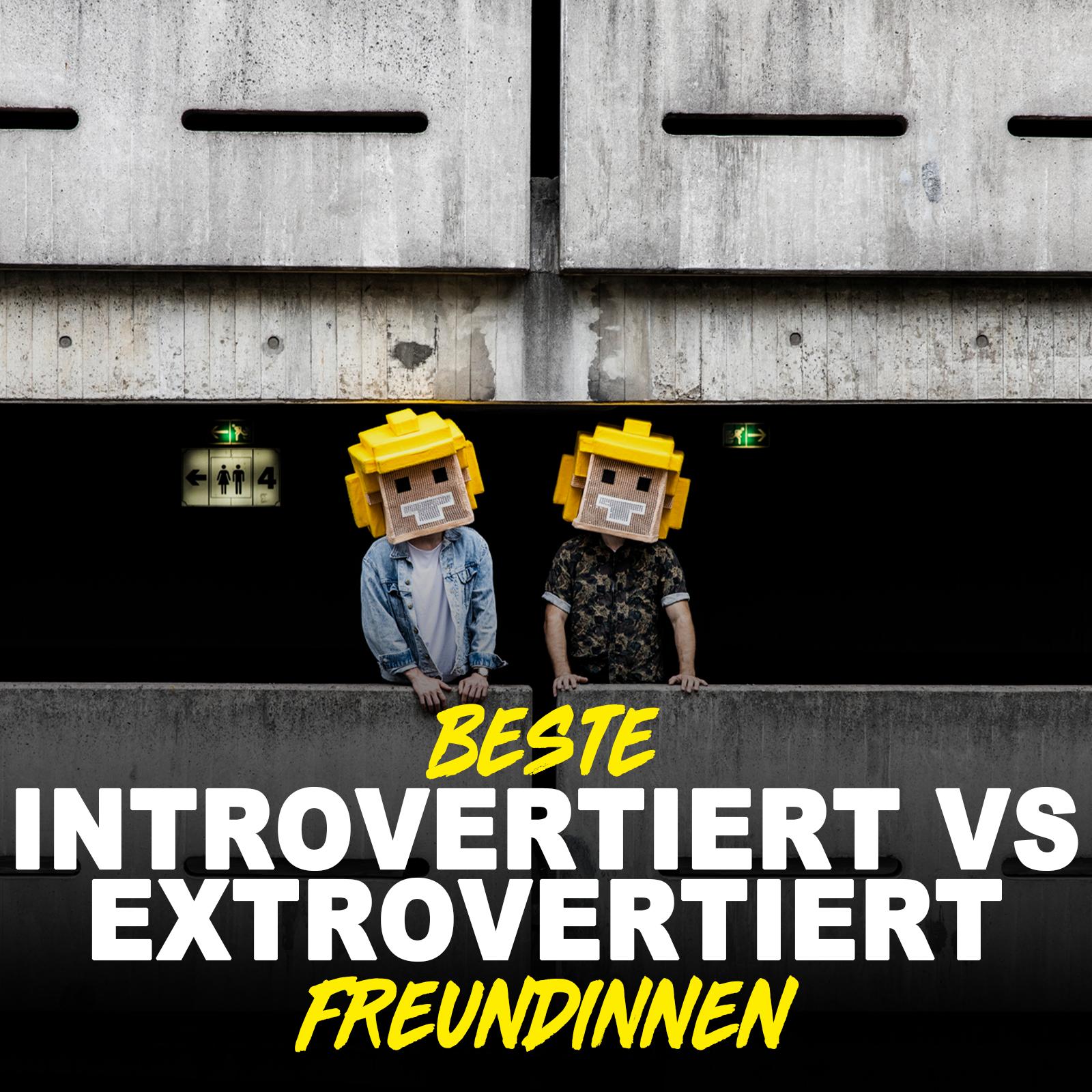 Introvertiert vs Extrovertiert