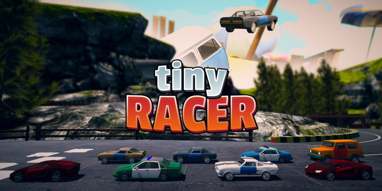Tiny Racer Switch Test
