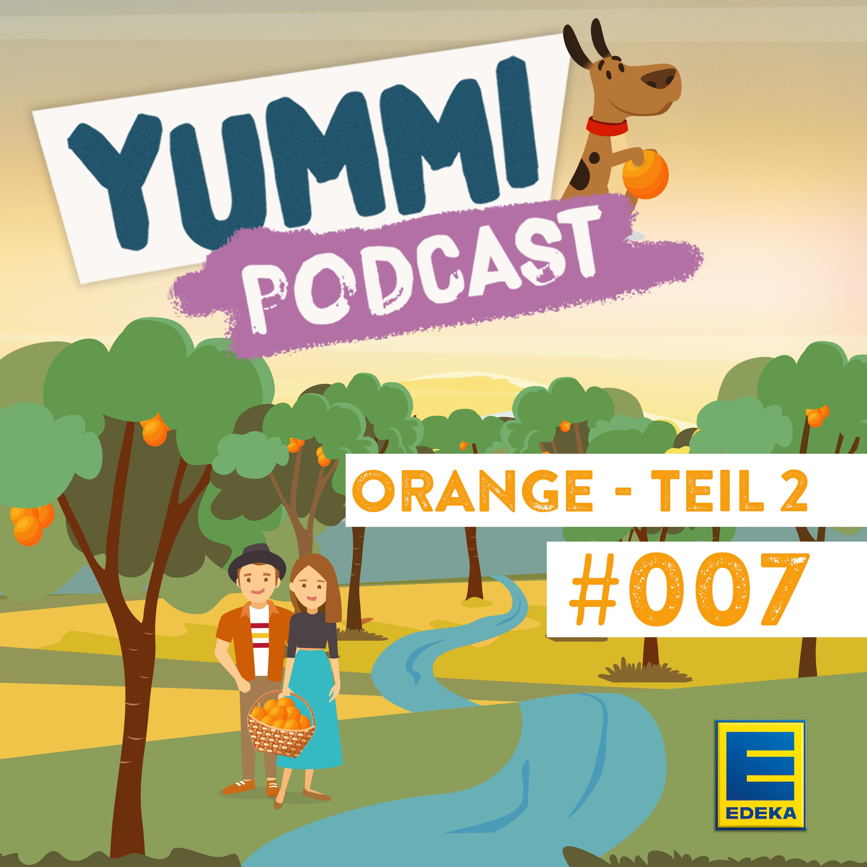 Im Land wo die Orangenbäume blühen – Teil 2