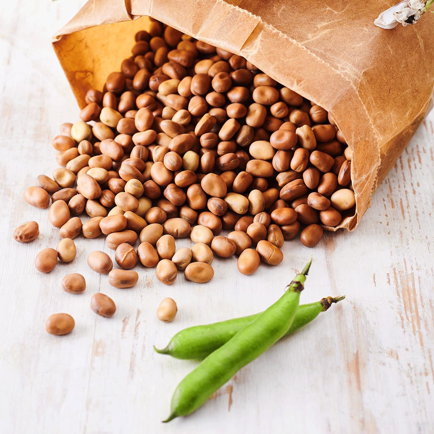 Nicht nur für Vegetarier: Pflanzliches Protein in der Ernährung