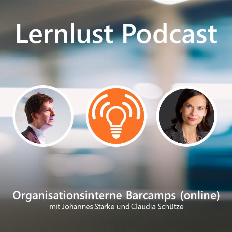 LERNLUST #2 // Organisationsinterne Barcamps (online)