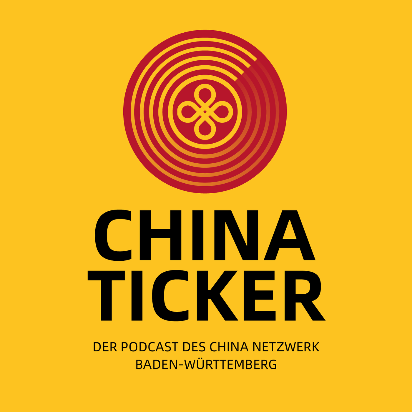 003 - Deutsch-Chinesische Zusammenarbeit   Interview Christian Sommer German Centre