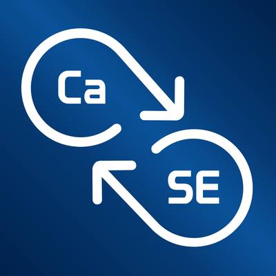 CaSE: Conversations about Software Engineering